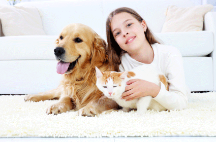 Child and pet stain removal